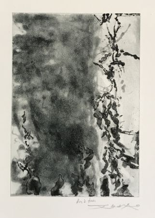 Etching And Aquatint Zao - Proustiennes (348)