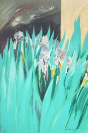 Lithograph Hemeret  - Provence aux iris