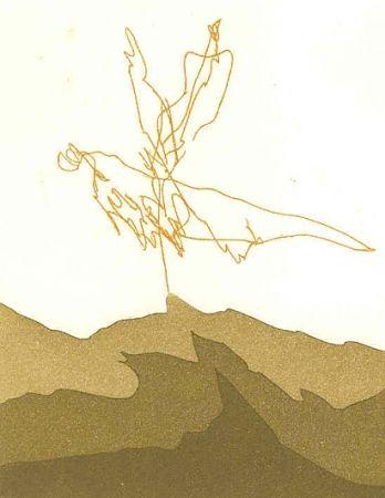 Illustrated Book Perilli - PTYX