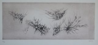 Etching And Aquatint Springer - Racines
