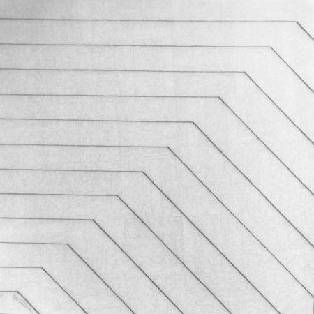 Screenprint Morellet - Recto-verso 45°, 2011