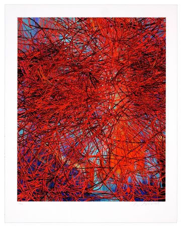 Numeric Print Myrvold - Red Wires in Sunset