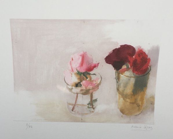 Engraving Lopez - Rosas de Invierno