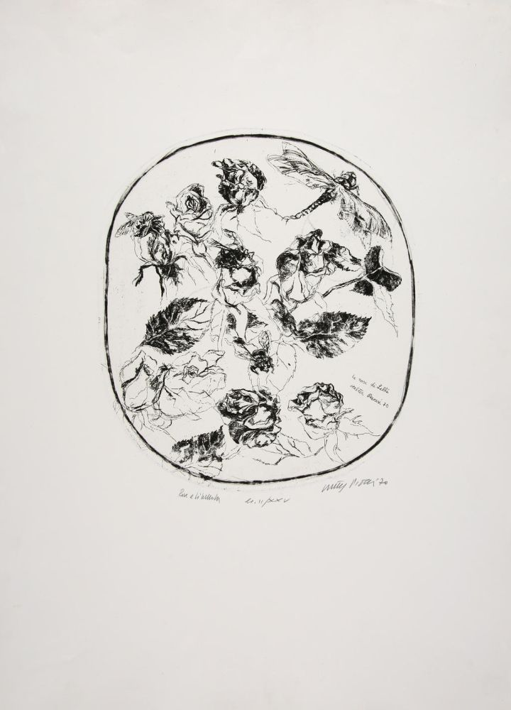 Engraving Piacesi - Rose e libellula