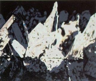 Lithograph Alexander - Sans titre