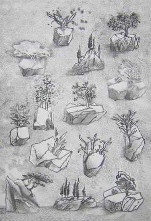 Drypoint Leclercq-K. - Saxifrage 2e état