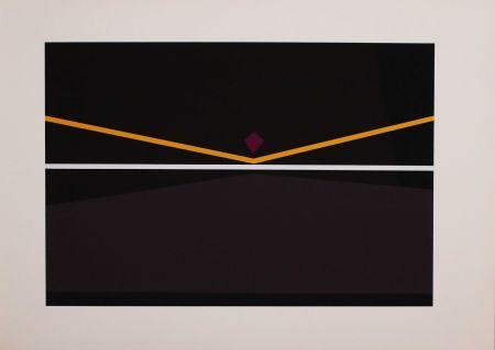 Screenprint Badiali - Sei fasi progressive di verticalità elastica