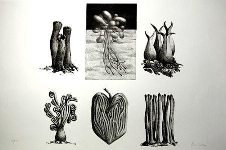 Lithograph Lionni - Senza titolo