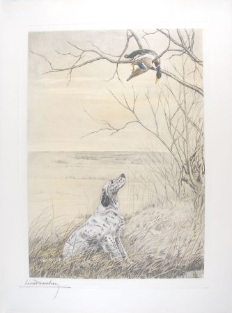 Etching Danchin - Setter et Canard branche - English Setter and Duck in a tree (Original)