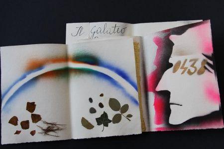 Illustrated Book Fioroni - Sonetto di veti e iridi