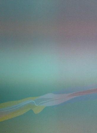Lithograph Bird - Spectre lumière 4