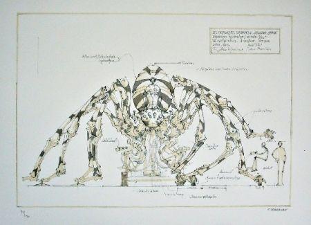 Lithograph Delarozière - Spider - mecanique savante - Liverpool  La machine