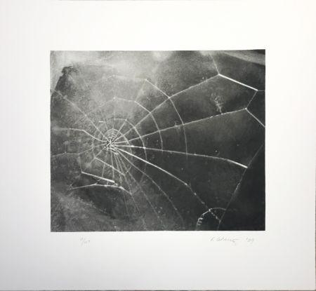 Screenprint Celmins - Spider Web