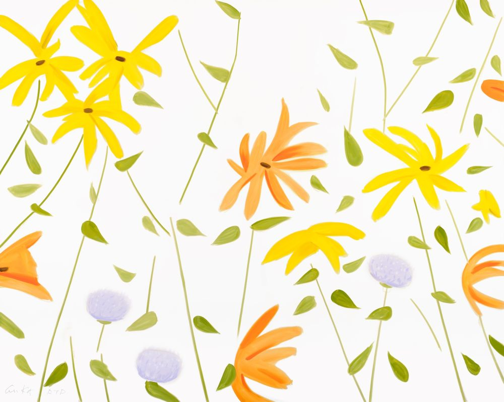No Technical Katz - Summer Flowers 2