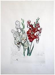 Drypoint Dali - Surrealistic Flowers, 541, Gladiolus cum aurium corymbo expectantium