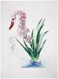 Drypoint Dali - Surrealistic Flowers, 542, Polyanthes tyberosa et cygnus vegetalis