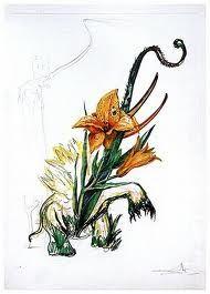 Drypoint Dali - Surrealistic Flowers, 545, Hemerocallis thumbergii elephanter furiosa