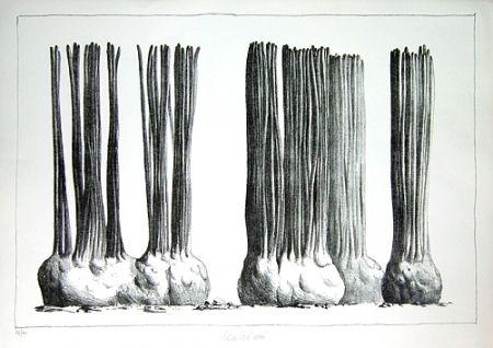 Lithograph Lionni - Taluma trillosa