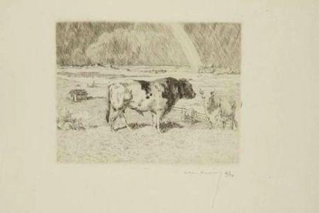 Etching Lunois - Taureau dans un pré / Bull in a Meadow