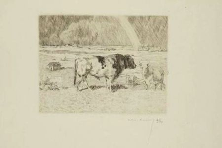 Etching Lunois - Taureau dans un pré / Bull in a Meadow