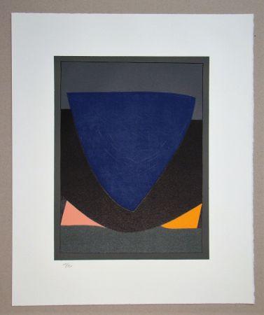 Lithograph Vasarely - Tecoma