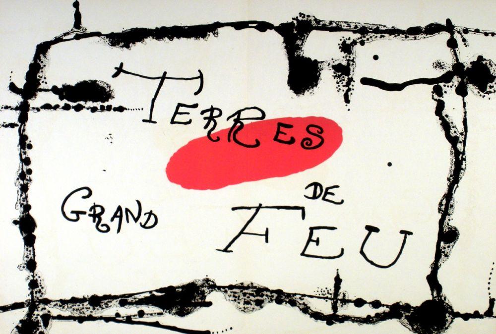 Lithograph Miró - Terres de grand feu