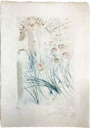 Drypoint Dali - The beloved feeds between the lilies