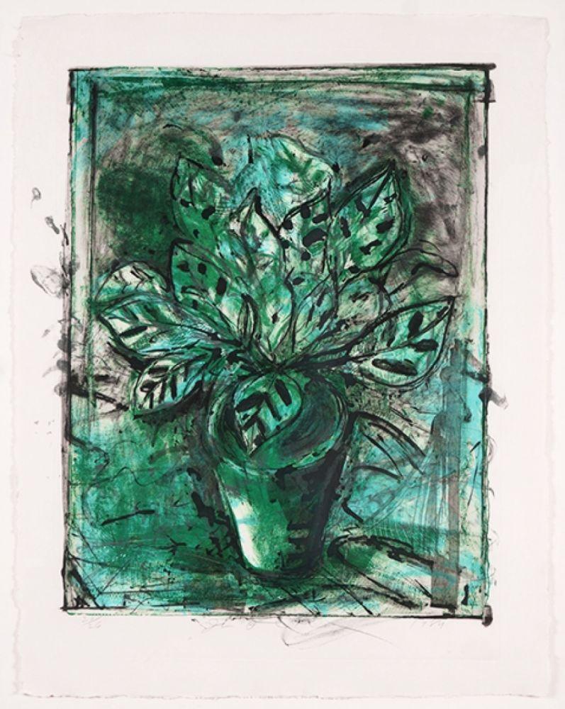 Lithograph Dine - The Jerusalem Plant, No 8