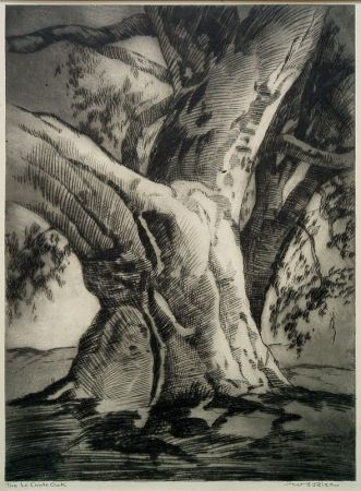 Drypoint Rice - The Le Conte Oak