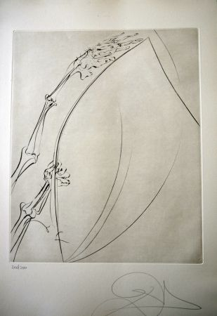 Drypoint Dali - THE ROD