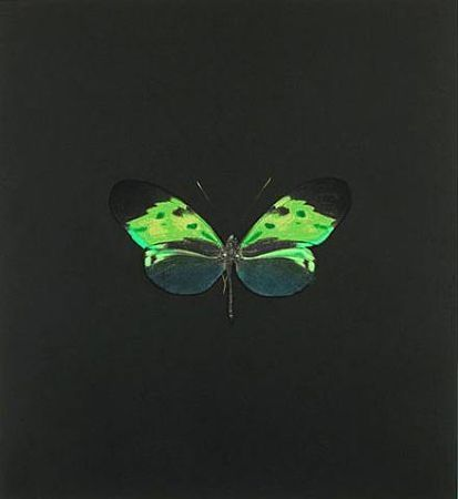 Engraving Hirst - The Souls on Jacob's Ladder Take Their Flight (Small Green)