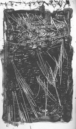 Illustrated Book Perilli - Theatrum Sanitatis