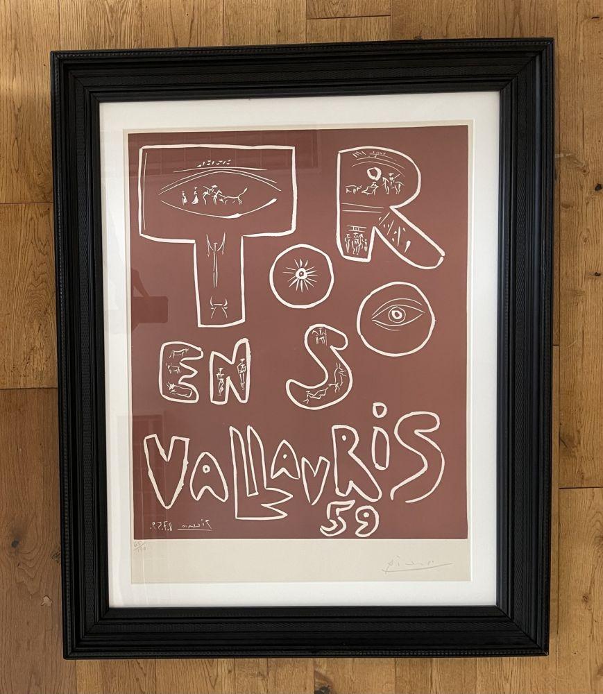 No Technical Picasso - Toros en Vallauris 59