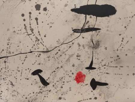 Illustrated Book Miró - Trace Sur l'eau