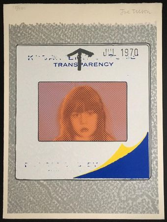 Screenprint Tilson - Transparency, Snapshot