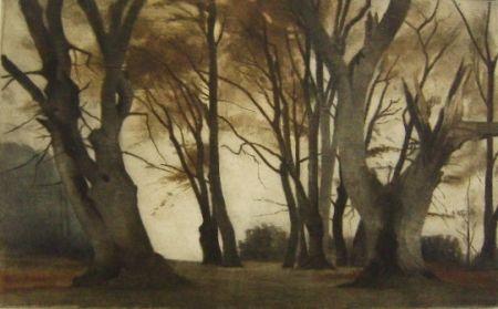 Mezzotint Ilsted - Trees in Elmelunden