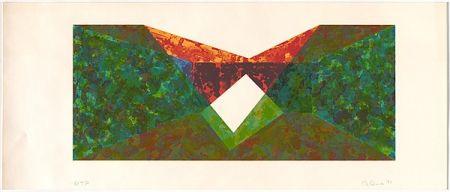 Screenprint Davis - Triangle Slice