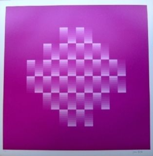 Lithograph Bird - Tribute to vasarely 10