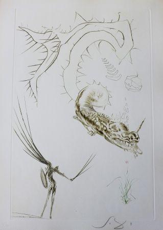 Etching Dali - Tristan et Iseult : Tristan et le dragon