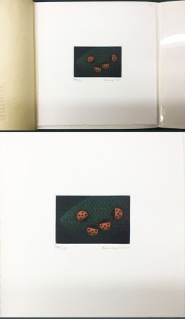 Mezzotint Hamaguchi - Two Pairs (Ladybirds). signed. with the original book (1976)