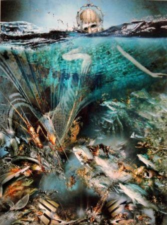 Numeric Print Hornung - Under Water Activities