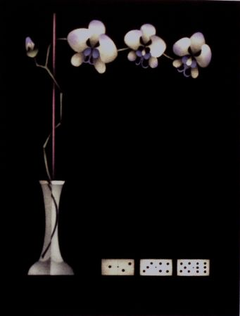 Mezzotint Avati - Une théorie de dominos