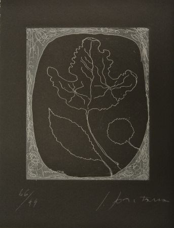 Etching And Aquatint Fontana - Untitled