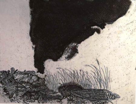 Engraving Zigaina - UNTITLED