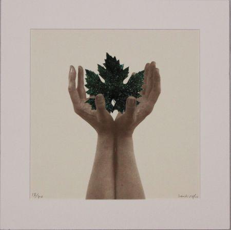 Lithograph Bentivoglio - Untitled