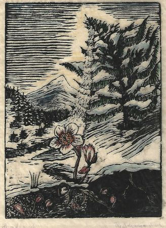 Woodcut Schanzenbach - Untitled