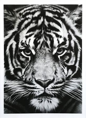 Screenprint Longo - Untitled (Tiger)