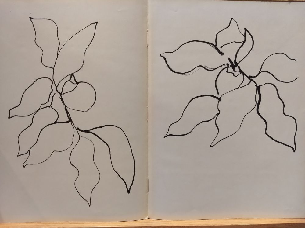 Illustrated Book Matisse - Vence