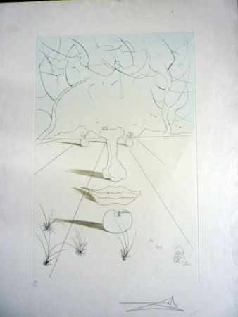 Etching Dali - Visage Surrealiste From