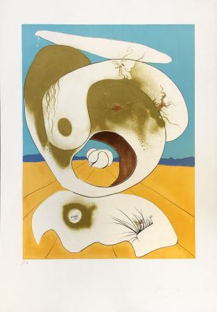Etching Dali - VISION PLANETAIRE ET SCATOLOGIC
